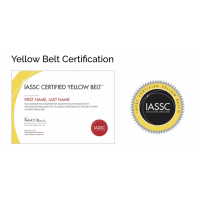 CSSYB - LEAN SIX SIGMA YELLOW  BELT ONLINE SELF PACED - 12 Months E-Learning Access [IASSC Exam OPTIONAL]