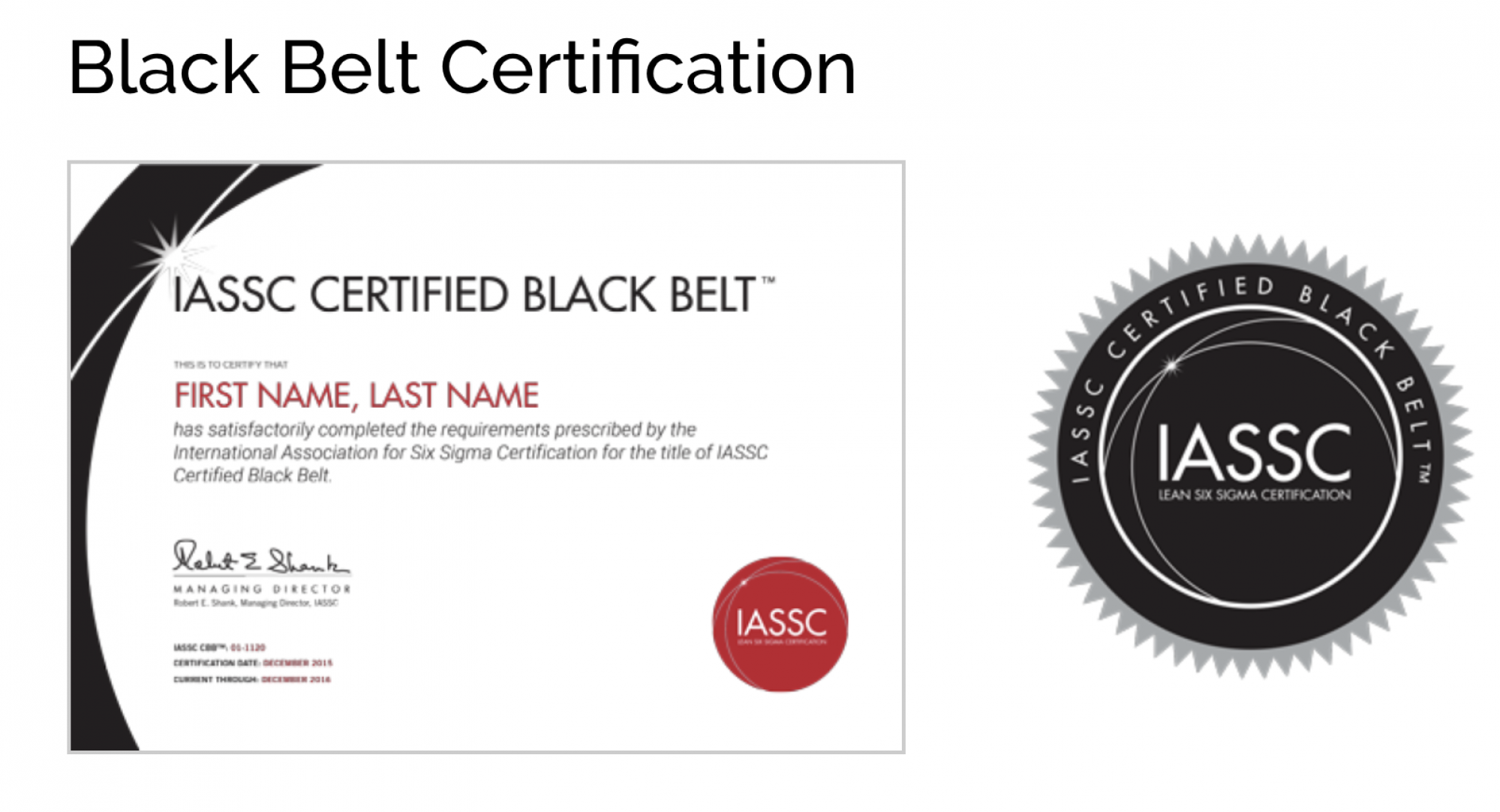 ICBB - LEAN SIX SIGMA BLACK BELT ONLINE SELF PACED - 12 Months E-Learning  Access