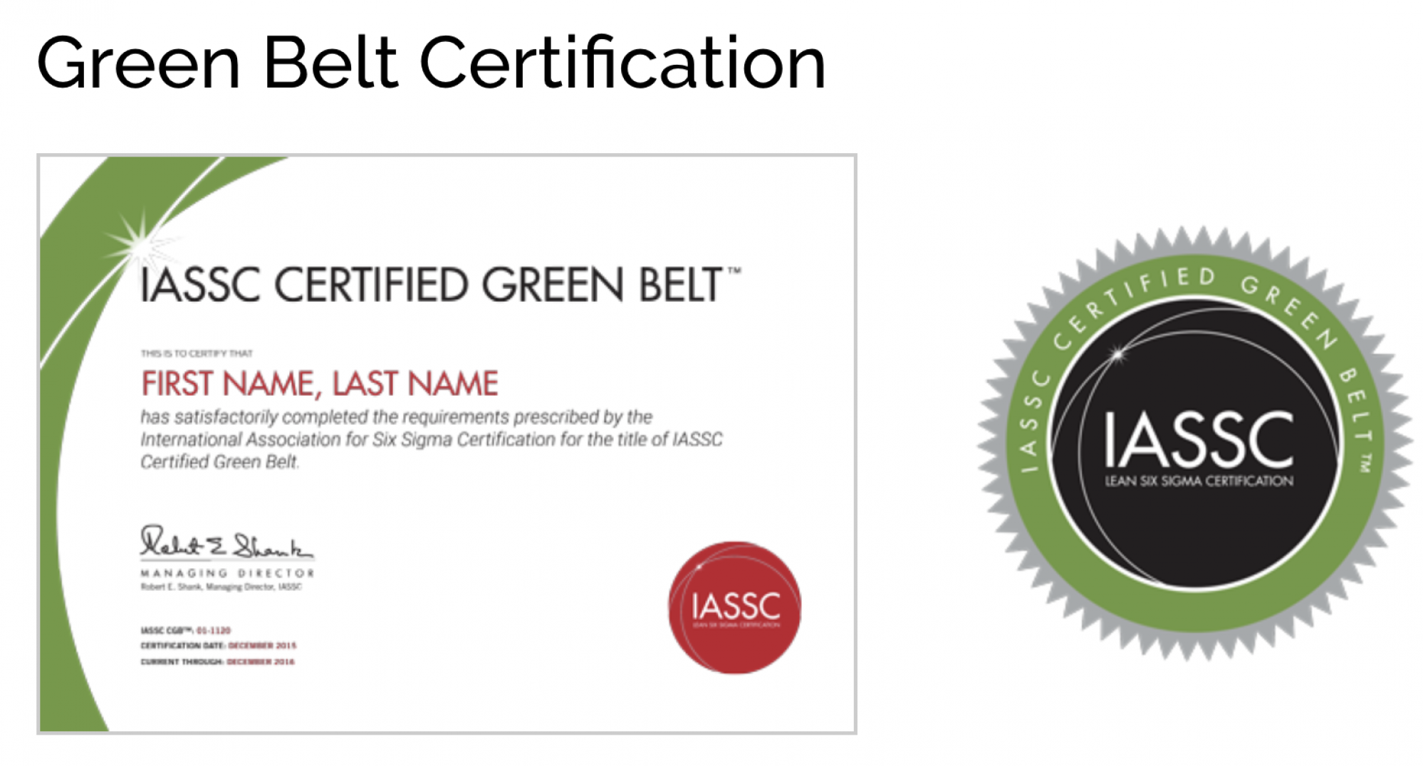 Icgb Iassc Certified Lean Six Sigma Yellowgreen Belt Combo